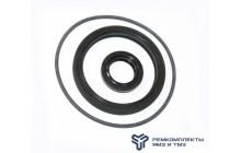 Ремкомплект муфты опережения впрыска 60 (РТИ)