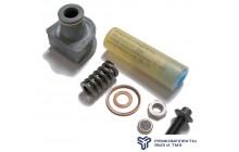 Ремкомплект форсунки  (фильтра,винт,уплотнитель штуцера,распылитель) С 2000Г